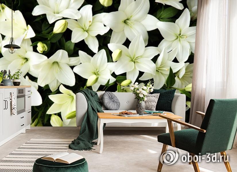 3D Фотообои «Белые лилии с бутонами» вид 7