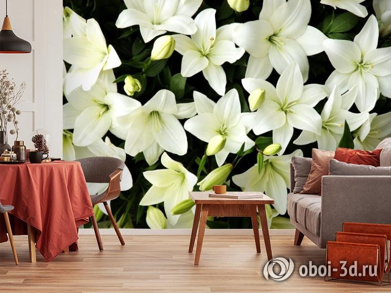 3D Фотообои «Белые лилии с бутонами» вид 5