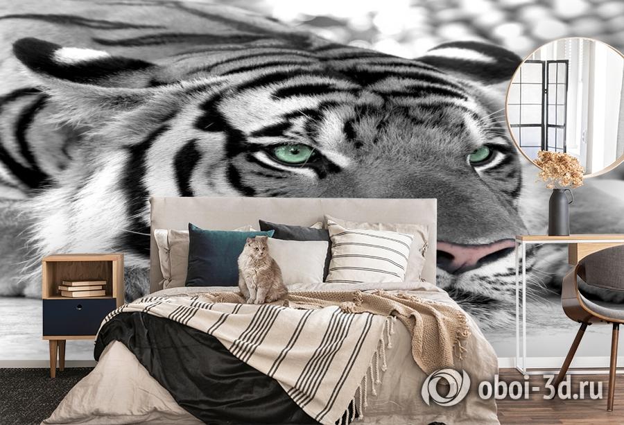 3D Фотообои  «Тигр черно-белые»  вид 5