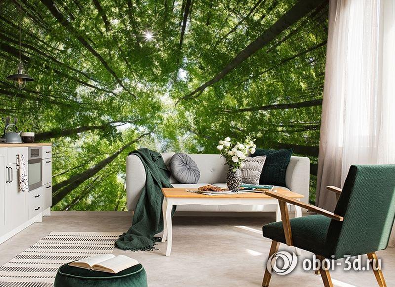 """3D Фотообои  """"Высокие деревья""""  Природа вид 6"""