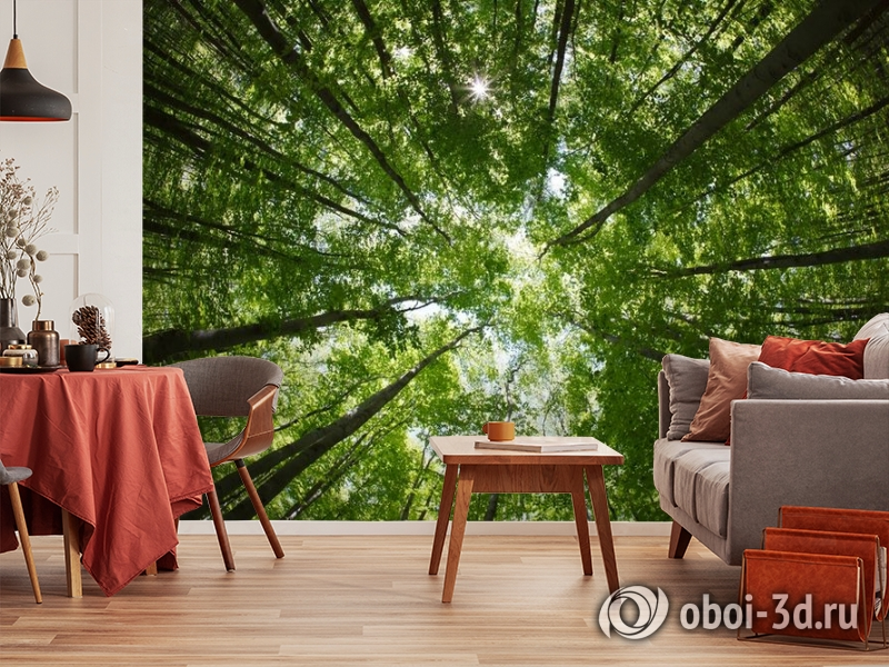 """3D Фотообои  """"Высокие деревья""""  Природа вид 5"""
