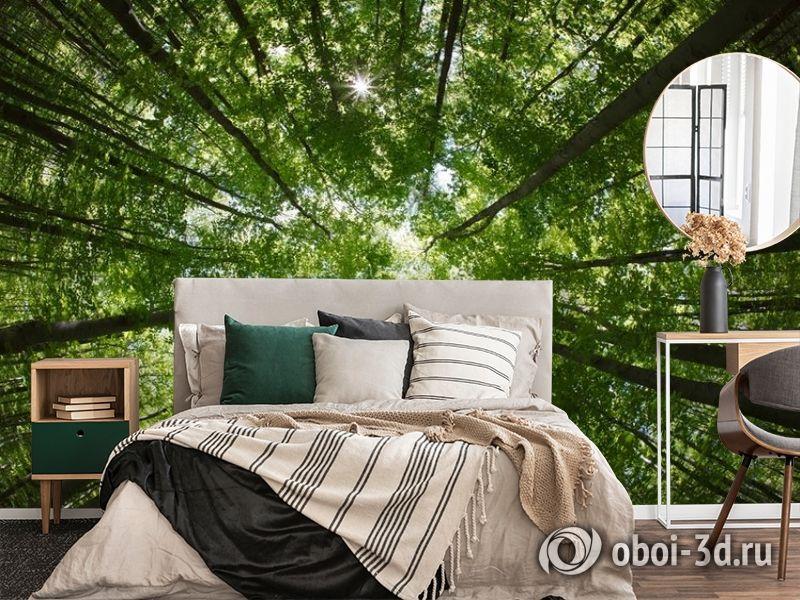 """3D Фотообои  """"Высокие деревья""""  Природа вид 4"""