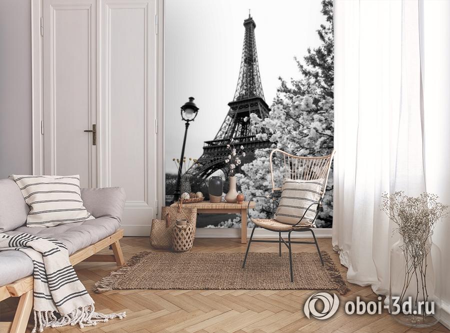3D Фотообои «Цветущие деревья в Париже» вид 9