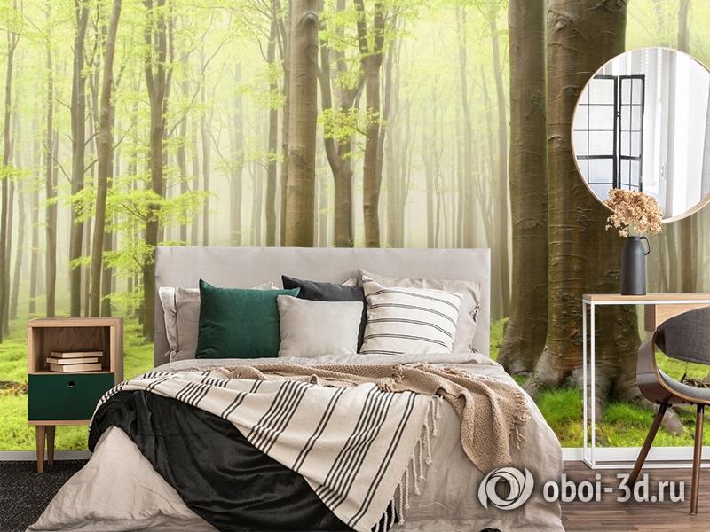 3D Фотообои  «Зеленый лес»  вид 4