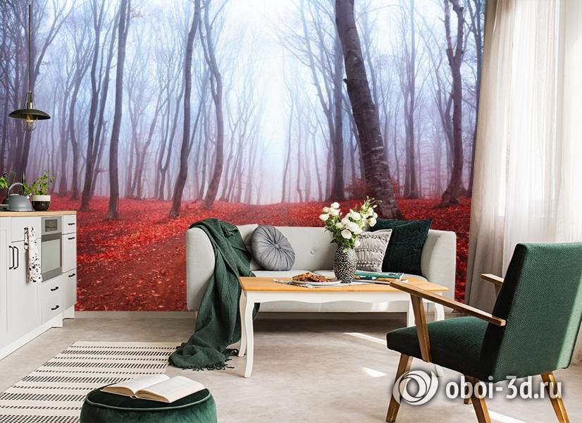 3D Фотообои  «Осенний лес в тумане»  вид 6