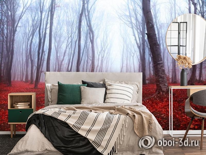 3D Фотообои  «Осенний лес в тумане»  вид 4