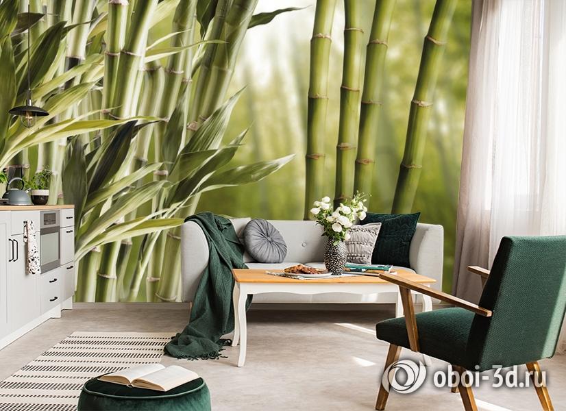3D Фотообои «Бамбук» вид 6