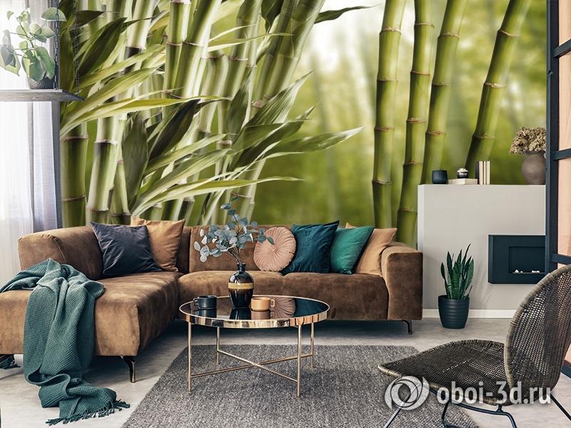 3D Фотообои «Бамбук» вид 3