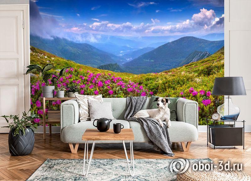 3D Фотообои  «Горные цветы» вид 8