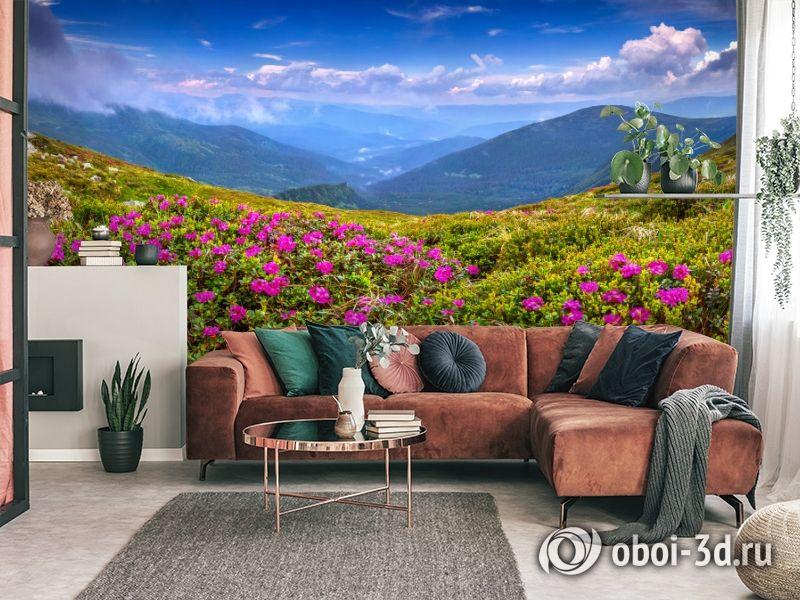 3D Фотообои  «Горные цветы» вид 3