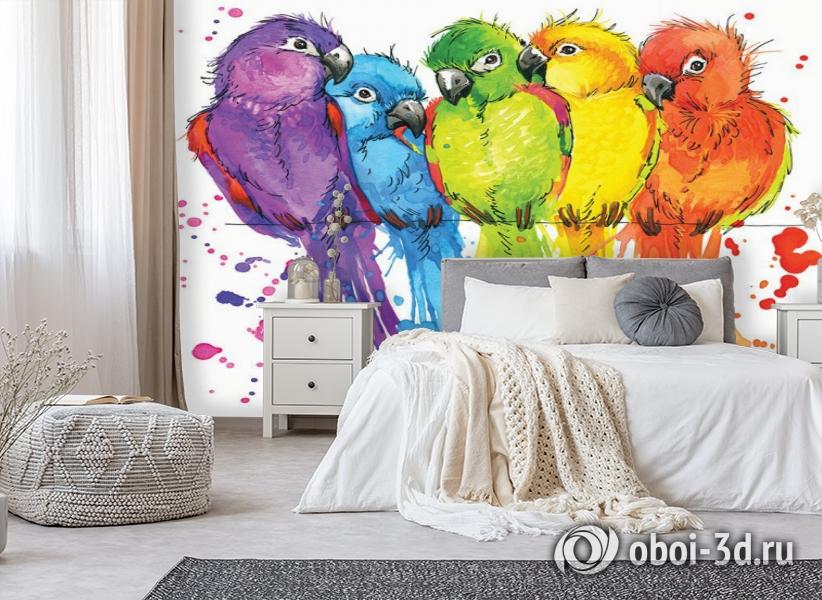 3D Фотообои «Яркие попугайчики» вид 6