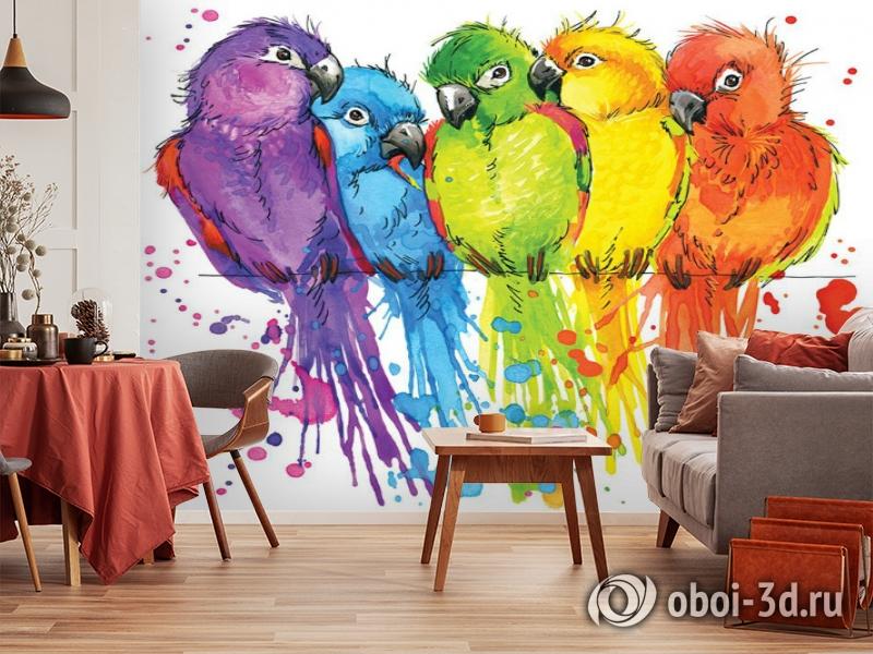 3D Фотообои «Яркие попугайчики» вид 3