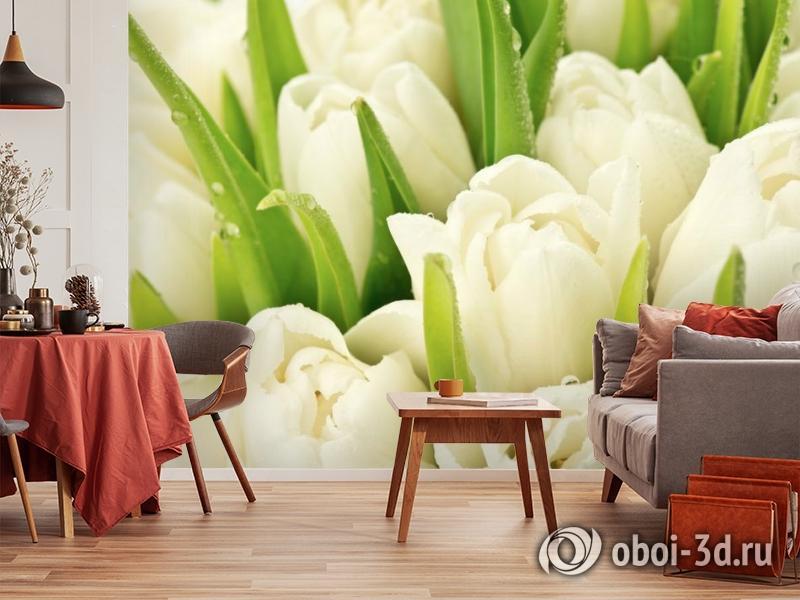 3D Фотообои «Белые тюльпаны» вид 5