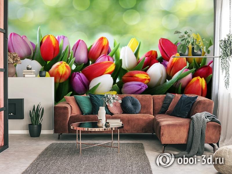 3D Фотообои «Разноцветные тюльпаны» вид 3