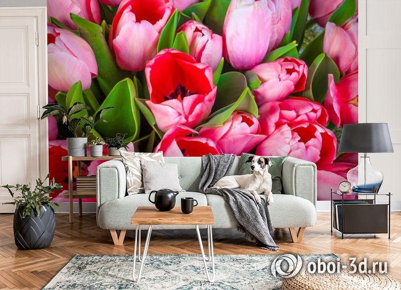 3D Фотообои «Букет тюльпанов» вид 8