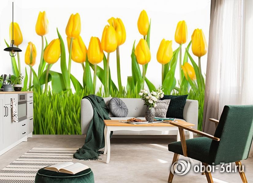 3D Фотообои «Желтые тюльпаны» вид 7