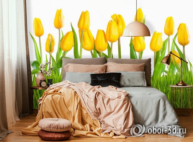 3D Фотообои «Желтые тюльпаны» вид 6