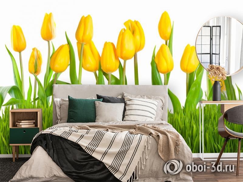 3D Фотообои «Желтые тюльпаны» вид 4