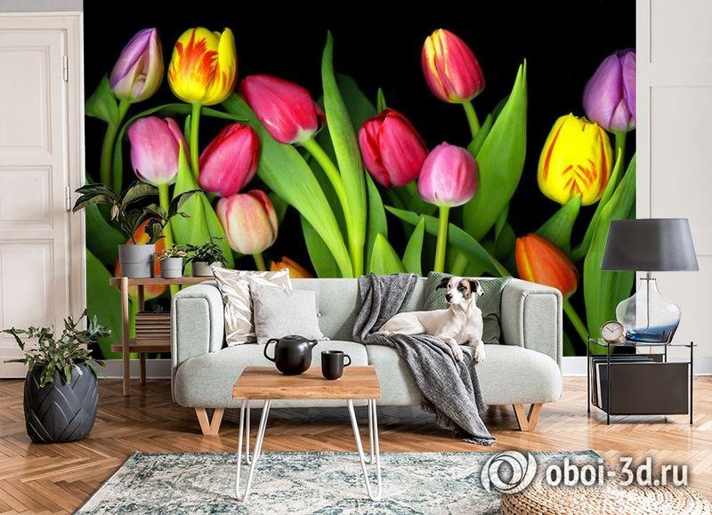 3D Фотообои «Тюльпаны на темном фоне» вид 8