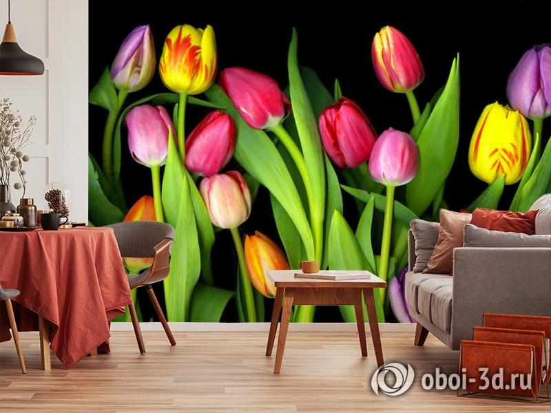 3D Фотообои «Тюльпаны на темном фоне» вид 5