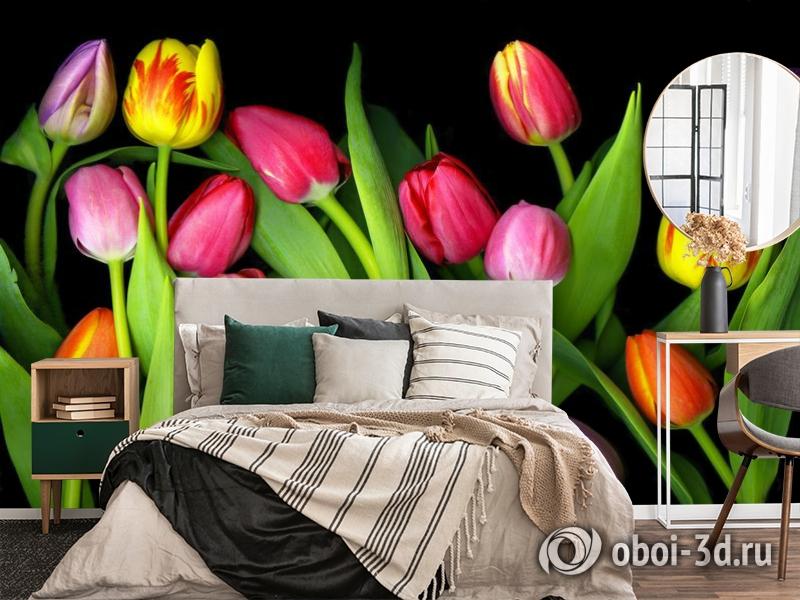 3D Фотообои «Тюльпаны на темном фоне» вид 4