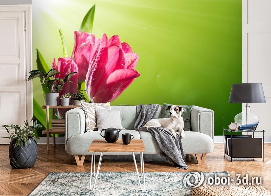 3D Фотообои «Тюльпаны на зеленом фоне» вид 8