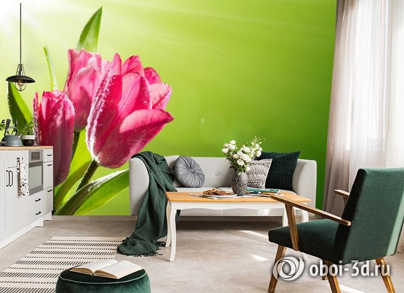 3D Фотообои «Тюльпаны на зеленом фоне» вид 7