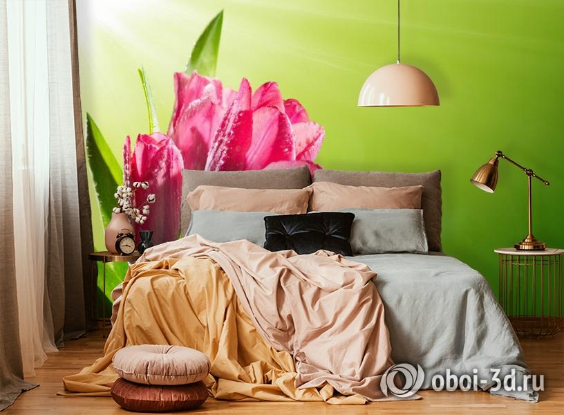3D Фотообои «Тюльпаны на зеленом фоне» вид 6