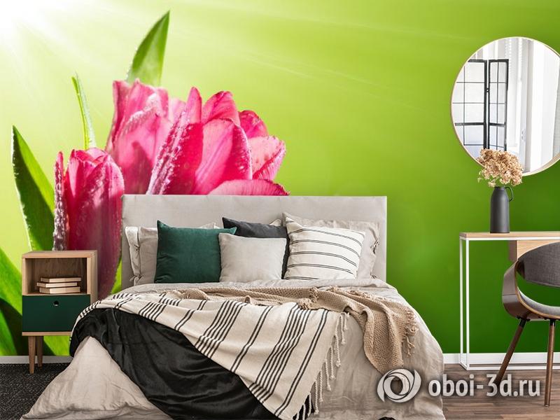 3D Фотообои «Тюльпаны на зеленом фоне» вид 4