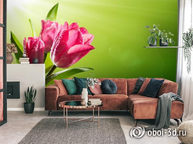 3D Фотообои «Тюльпаны на зеленом фоне» вид 3