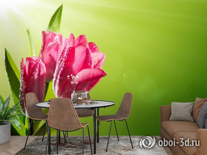 3D Фотообои «Тюльпаны на зеленом фоне» вид 2