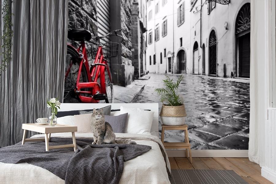 3D Фотообои «Красный велосипед на черно белой улочке» вид 7