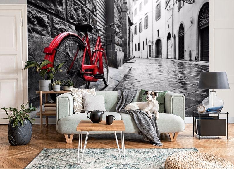 3D Фотообои «Красный велосипед на черно белой улочке» вид 6