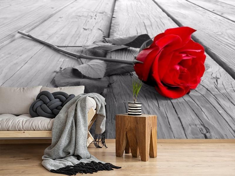 3D Фотообои «Черно белое фото с красной розой» вид 2