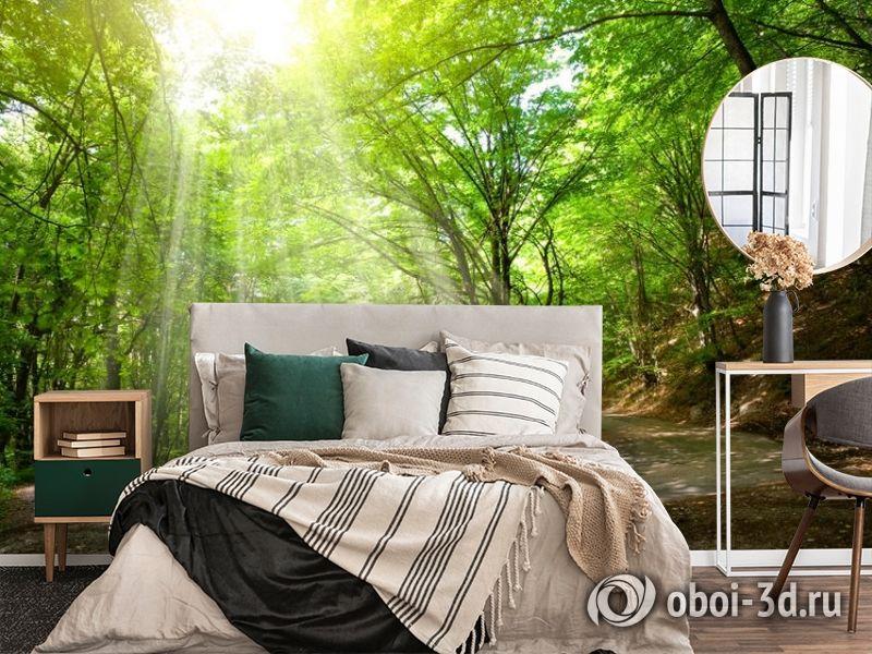 3D Фотообои «Дорога в солнечном лесу» вид 4