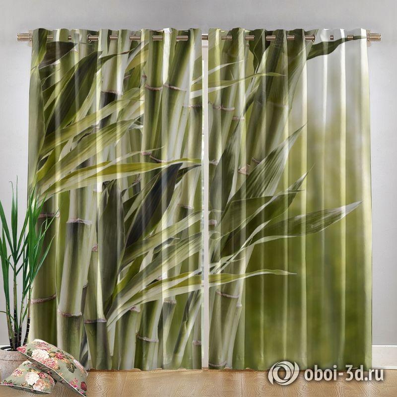 Фотошторы «Бамбук» вид 4