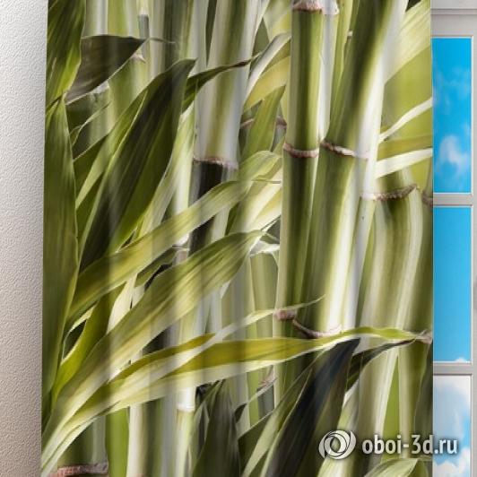Фотошторы «Бамбук» вид 3