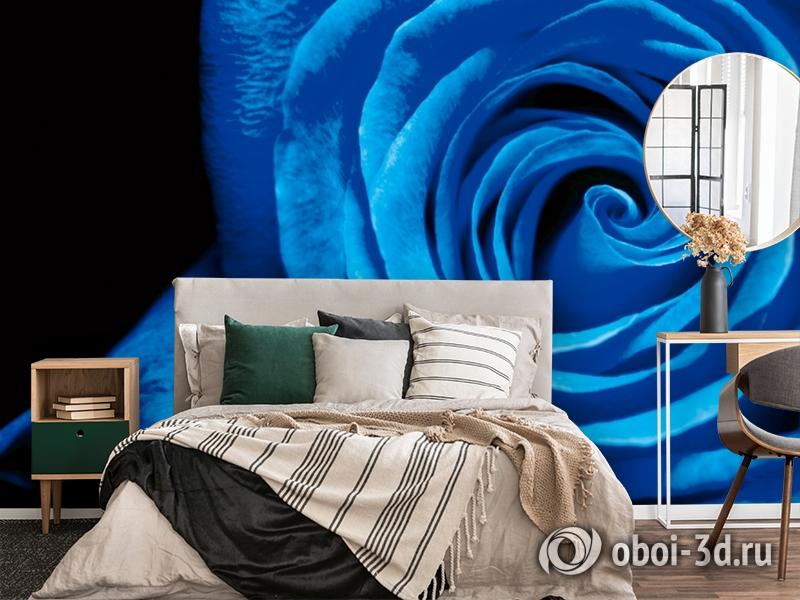 3D Фотообои  «Синяя роза» вид 4