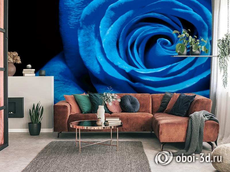 3D Фотообои  «Синяя роза» вид 3