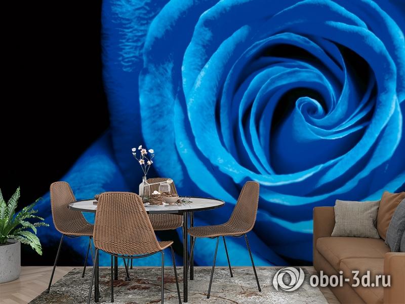 3D Фотообои  «Синяя роза» вид 2