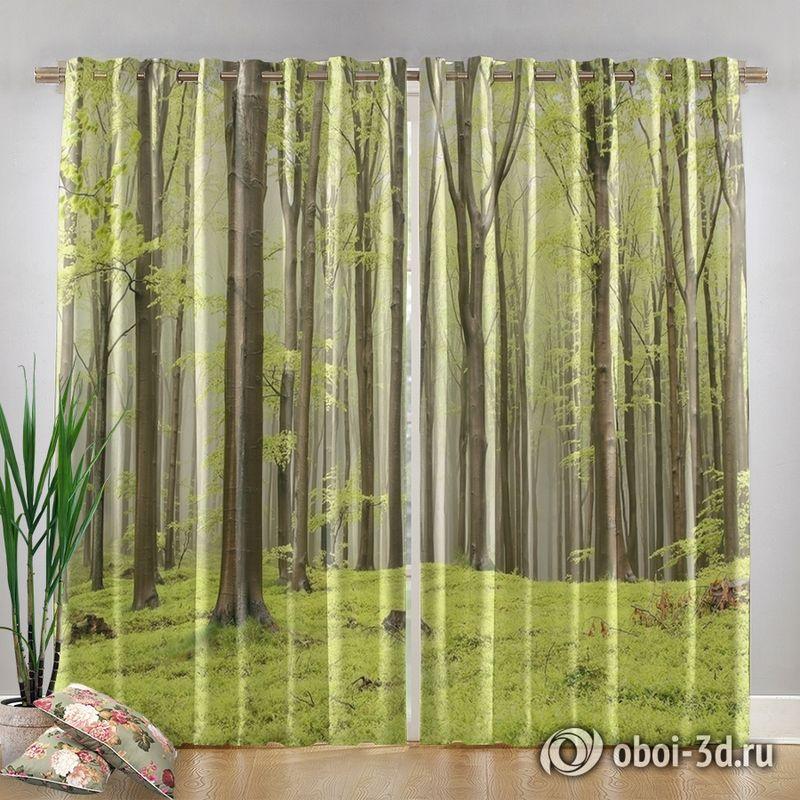 Фотошторы «Зеленый лес» вид 4