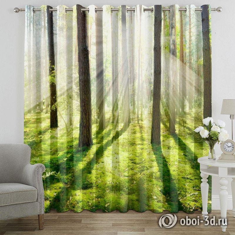Фотошторы «Солнечный лес» вид 7