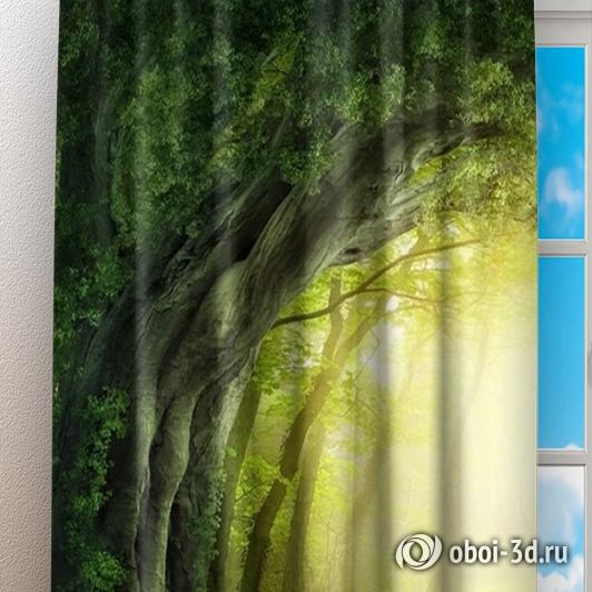 Фотошторы «Тоннель из деревьев» вид 3