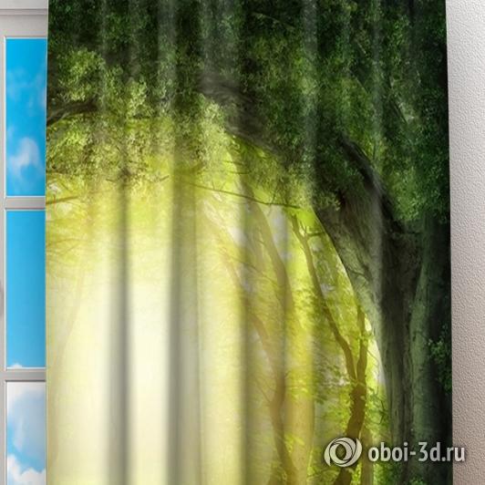 Фотошторы «Тоннель из деревьев» вид 2