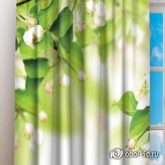 Фотошторы «Цветы яблони» вид 3