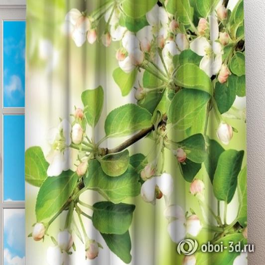 Фотошторы «Цветы яблони» вид 2