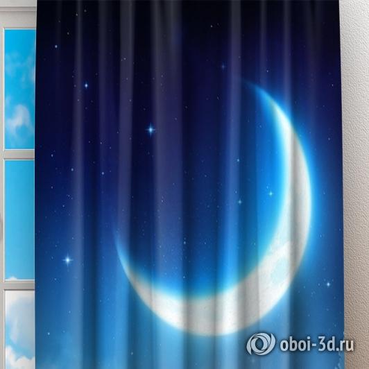 Фотошторы «Ночная луна» вид 2