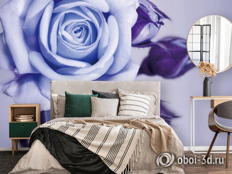 3D Фотообои  «Сиреневая роза»  вид 4