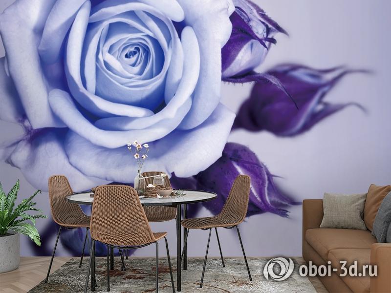 3D Фотообои  «Сиреневая роза»  вид 2