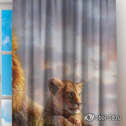 Фотошторы «Величественные львы» вид 2